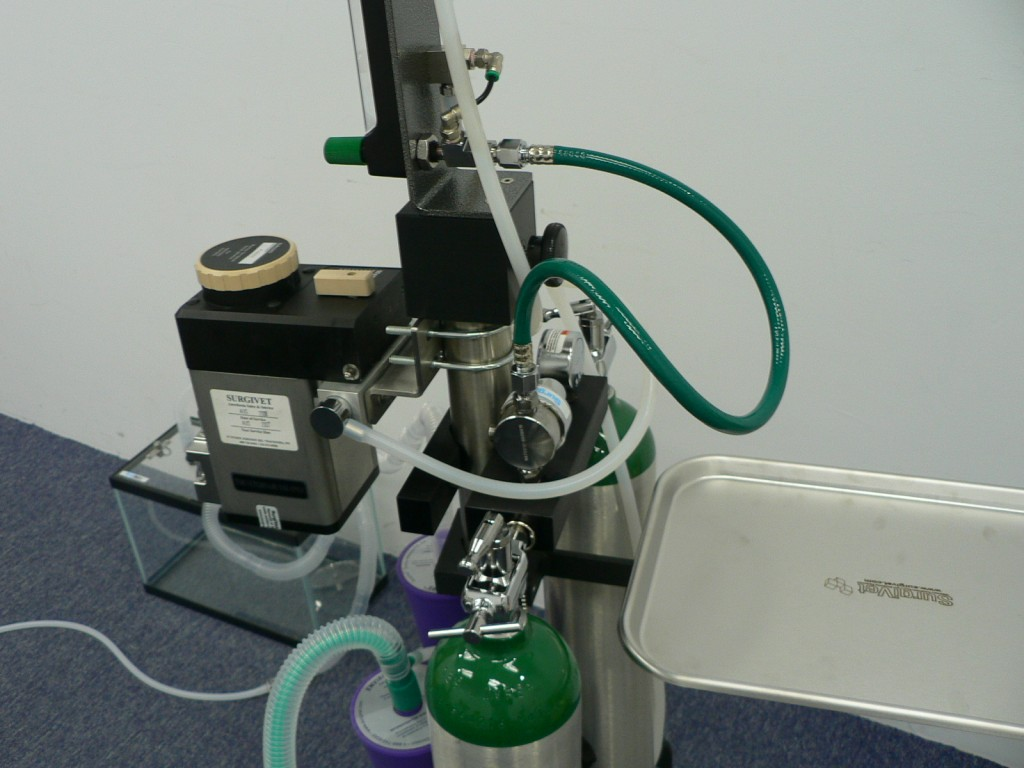 Medicalplus Vet 187 Anaesthesia Setup For Rodent Research